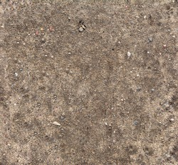 Ground seamless textured surface background under bright sunlight / closeup texture