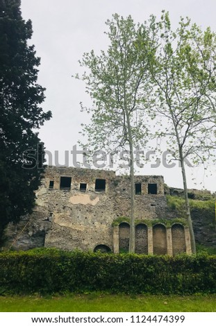 Grounds surrounding the ruins of Pompeii #1124474399