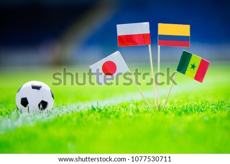 Group H - Poland, Senegal, Columbia, Japan national Flag and football ball on green grass. Fans, support photo, edit space.  #1077530711