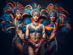 Group of a sexy girls in a colorful sumptuous carnival feather suit.