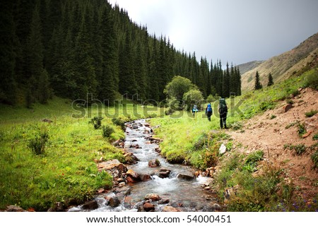 Group of backpackers walking in summer mountains