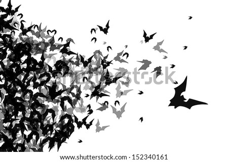 group of bats isolated on white background