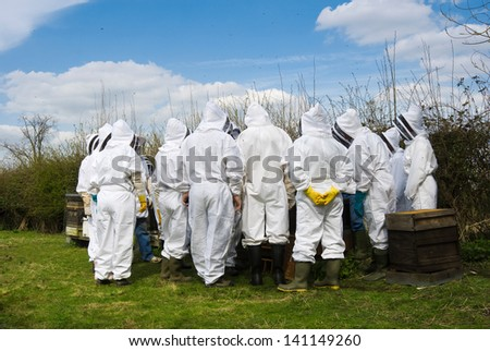 Group of beekeepers on beekeeping course at an apiary examining hives in summer on a sunny day, with bees flying in the air.