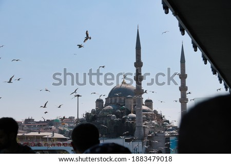 group of birds in front of Yeni Cami mosque view from Galata bridge, Istanbul Stok fotoğraf ©