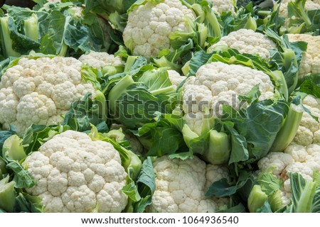 Group of cauliflowers with green leaves Foto stock ©