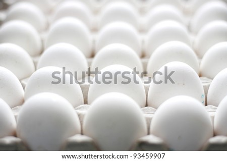 group of chicken raw eggs