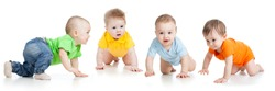 Group of cute babies crawling on floor. Isolated on white.