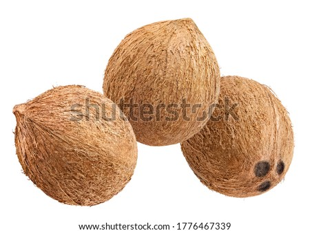 Group of delicious coconuts, isolated on white background