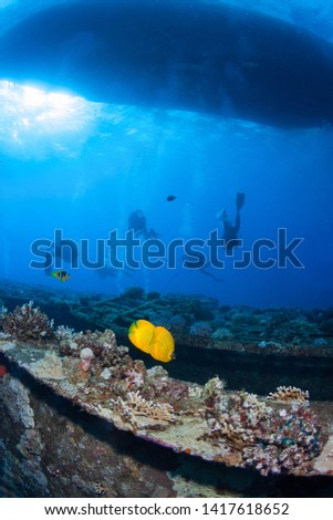 Group of divers explore the wreck, Red Sea, Egypt. #1417618652