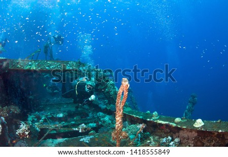 Group of divers, ship wreck, Red sea, Egypt. #1418555849