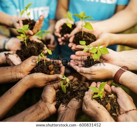 Group of environmental conservation people hands planting in aerial view #600831452