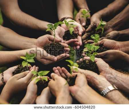 Group of environmental conservation people hands planting in aerial view #604504820