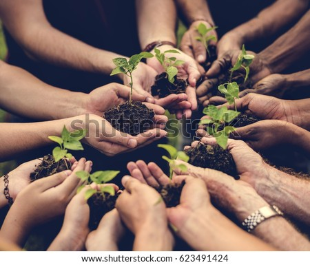 Group of environmental conservation people hands planting in aerial view