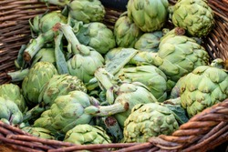 Group of fresh green artichokes in the whicker natural basket prepared for sale at the market closeup.
