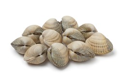 Group of fresh raw cockles isolated on white background