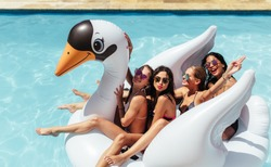 Group of friends on vacation sitting together on an inflatable swan in swimming pool. Multi-ethnic women friends enjoying on a inflatable white swan in pool.