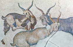 Group of goats - ancient Byzantine mosaic in the Great Palace of Constantinople in Istanbul, Turkey, dating to the reign of Byzantine emperor Justinian I, 6th century A.D.