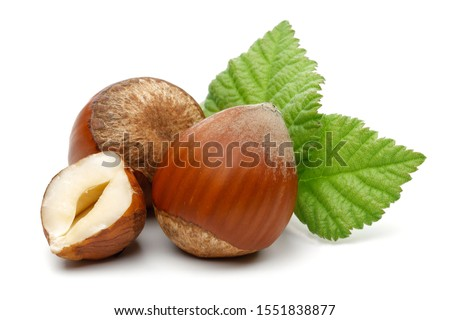 Group of hazelnuts with green leaves isolated on white background Foto d'archivio ©