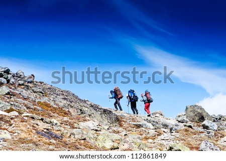 Group of hikers in the mountain