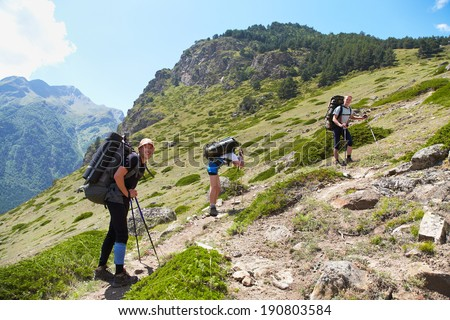 Group of hikers in the mountain. Climb to the top. summer hiking