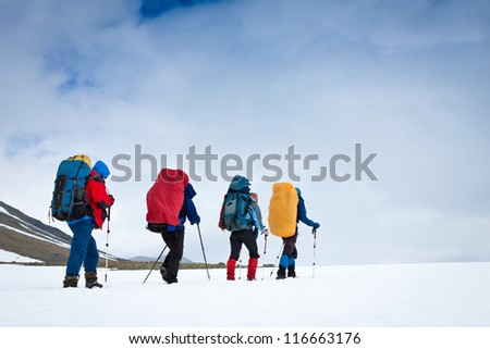 Group of hikers in the mountains