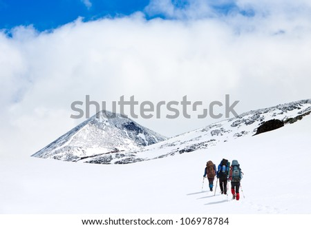 group of hikers in winter mountains #106978784