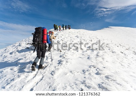 Group of hikers moving to the top in winter mountain.