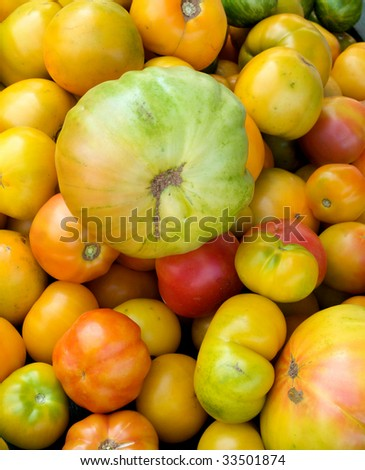 Group of just harvested heirloom tomatoes at local farm market