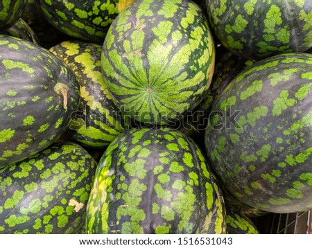 group of large  large fresh watermelons