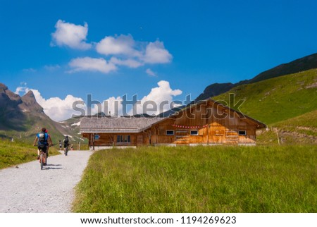 group of mountain bikers on a path in the mountains #1194269623