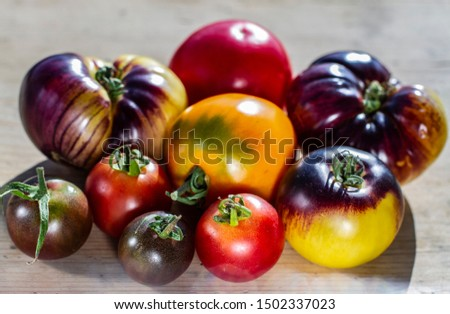 group of multi-colored tomatoes of different varieties on a wooden background