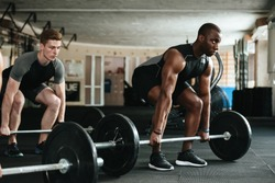 Group of multiracial sports people working out with barbells in the gym