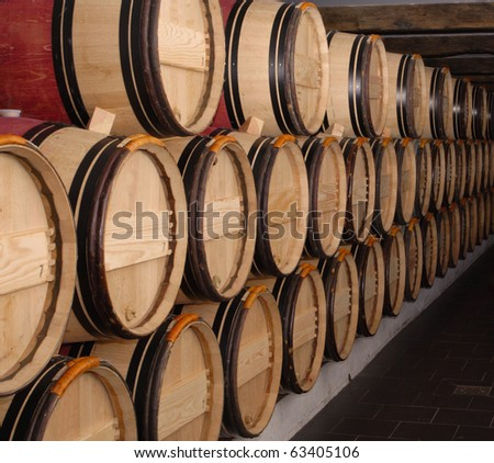 group of oak barrels with the wine at the cellar