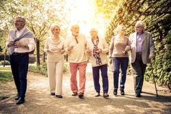 Group of old people walking outdoor. Old friends walking in a park during a sunny day