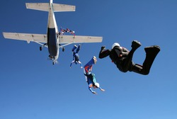 Group of parachutists jump together from an airplane against the blue sky