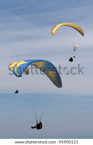 group of paragliders