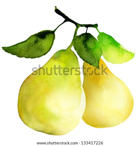 group of pears, watercolor painting on white background