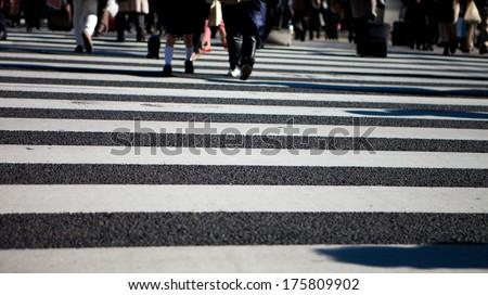 group of people crossing on zebra cross