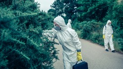 Group of people in bacteriological protection suits looking for samples in the vegetation of an empty road