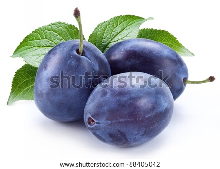 Group of plums with plum leaves isolated on a white background.
