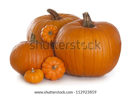 Group of pumpkins isolated on white background