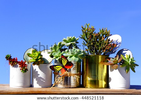 Group of recycled cans. Five lined recycled cans with various succulent plants over wood board on blue sky.