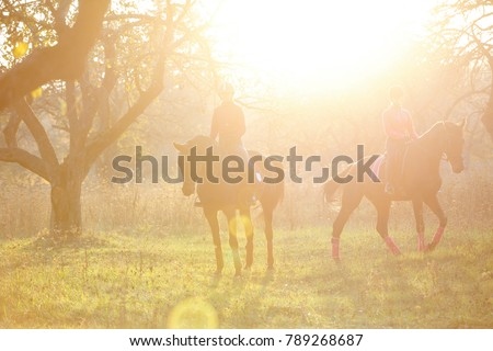 Group of rider girls walking with horses in park in sunset beams. Equestrian recreation activities background with copy space