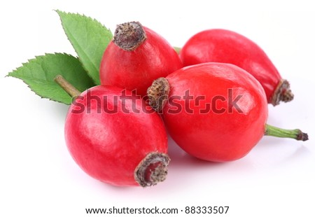 Group of rose hips isolated on a white background.