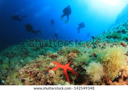 Group of Scuba Divers underwater in Mediterranean Sea #142549348