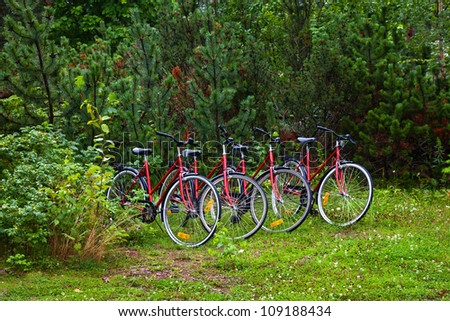 Group of several cycles in the forest - Shutterstock ID 109188434