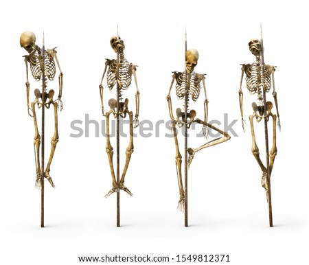 Group of skeleton's impaled on spiked sticks on a isolated white background. 3d rendering Сток-фото ©