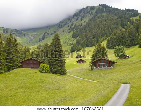 Group of Swiss styled huts in the valley of First, Grindelwald, Switzerland