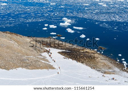 Group of tourists climb on the mountain, Antarctica