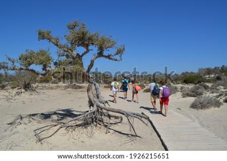 Group of tourists walking on Chrissi island, Greece